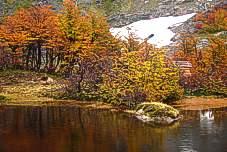Lago Natacion Hielo Azul